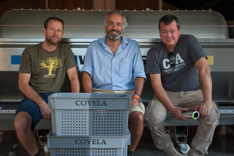 The Covela Boys: Gonçalo Sousa Lopes, viticulturist, Rui Cunha, winemaker, and Tony Smith, partner, at the end of the 2012 harvest